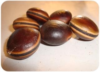 mucuna-seeds