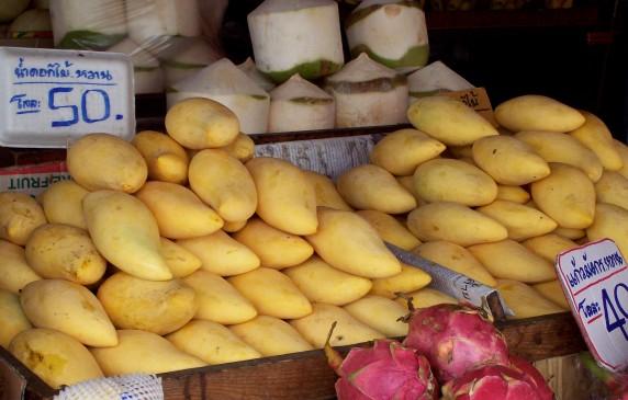 mangos crop